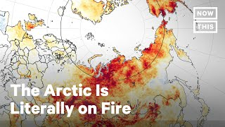 The Arctic Is Literally on Fire | NowThis