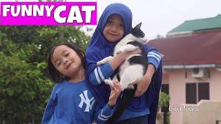 Kucing Lucu - Funny Cat Lifia Niala Elsa