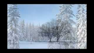 Winter Solstice: New Age for Relaxation, Sleep Music, Ambient Music, Skyfall inspitation video