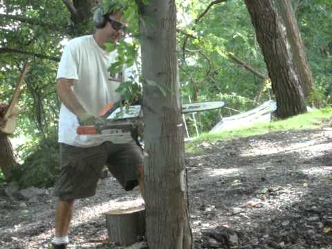 Stihl Chainsaw Ms-290 Cutting Tree 3 Down video