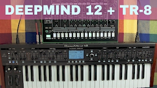 BEHRINGER DEEPMIND 12 + ROLAND TR-8 ~ Will They Pair? Ep.07