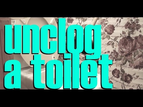 Image Result For Best Way To Unclog A Toilet
