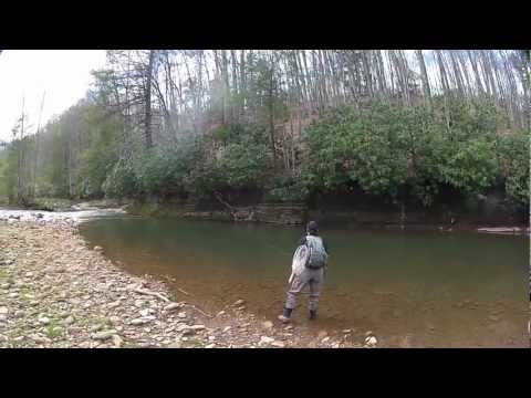 West virginia fishing videos for Trout fishing in wv