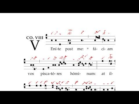 Gregorian Chant - Visionem quam vidistis