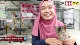 [KAPSUL BHTV] IQ DIDIK - Selamatkan kucing terbiar di Universiti Malaya