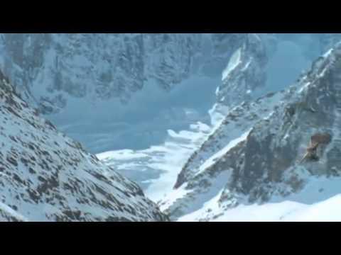 Айрэ и Саруман - Два дракона на скорую руку