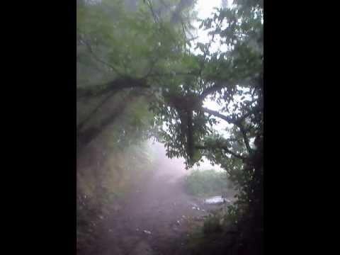 Camino de Santiago. Año Xacobeo 2010.