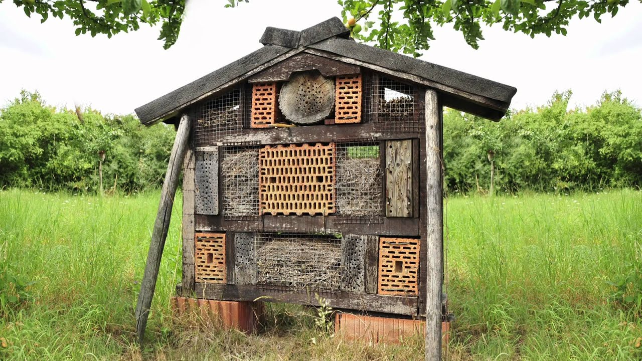 nabu insektenhotels im landkreis gro gerau youtube. Black Bedroom Furniture Sets. Home Design Ideas