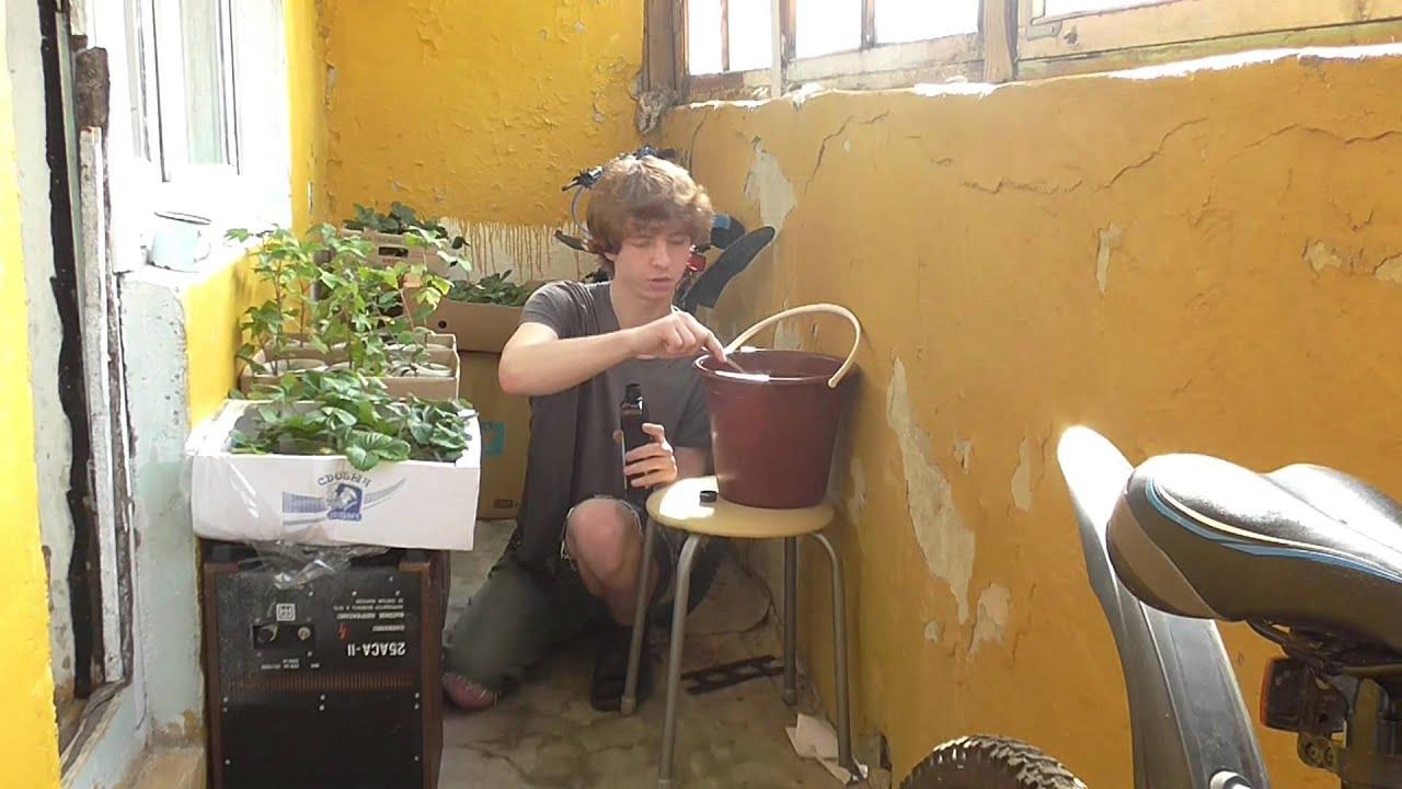 Как сделать жидкое удобрение для огорода из сорняков 96