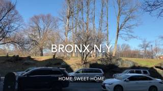Life in the Bronx