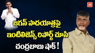Chandrababu Shocks on Intelligence Report over YS Jagan Padayatra | TDP vs YCP