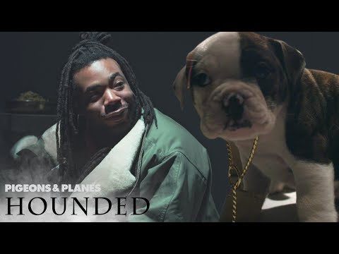 DRAM Gets Interviewed By Puppies | Hounded