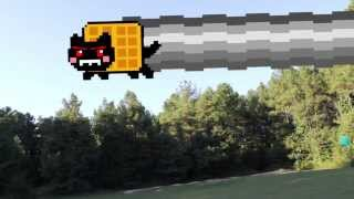 The Nyan Cat Attack Strikes Back!!!