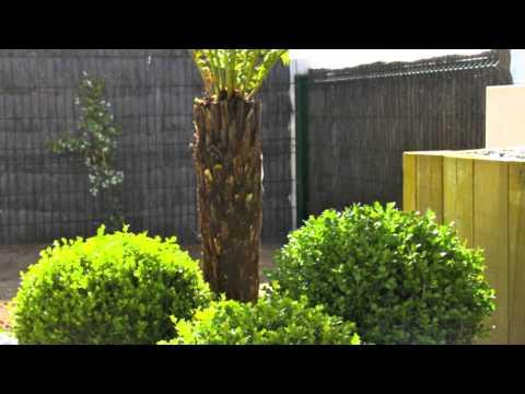 Am nagement de jardin sur vannes baden morbihan arbor for Amenagement jardin vannes