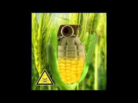 CthePower ~ GRANNY GOOD FOOD ON GMOS