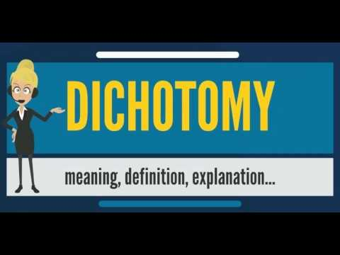 What is DICHOTOMY? What does DICHOTOMY mean? DICHOTOMY meaning, definition & explanation