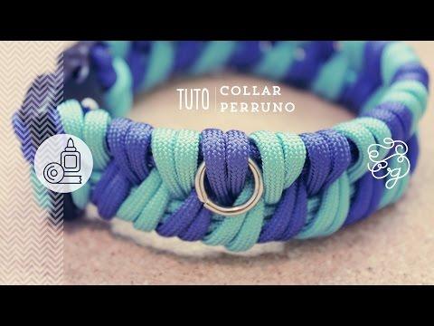 Diy collar isabelino para gatos videolike for Como hacer un collar para perro