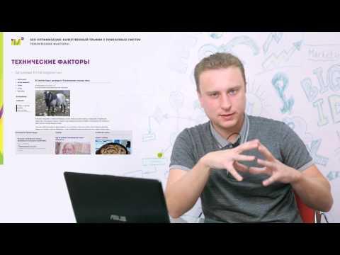 SEO сайта для начинающих. Видеоурок № 2. Технические факторы ранжирования. Часть 1