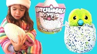"""❄Ông Già NoelTặng  """"Trứng Nở Khổng Lồ Hatchimal"""" (Phần 1)/ Hatchimal Egg Surprise s"""