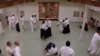 Hawk Durham Sensei at Kenosha Aikikai (Full video)
