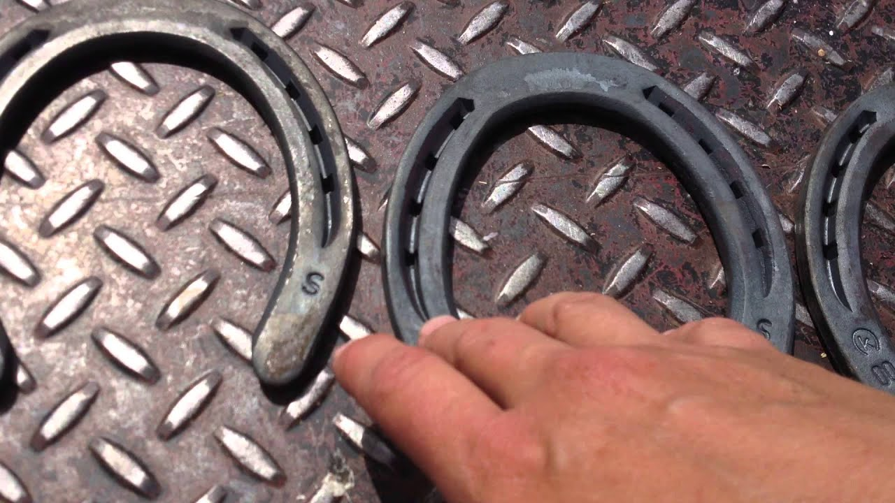 Horse Shoe Sizes And Wearing