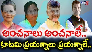 AP CM Chandrababu Naidu To Meet Mamata Banerjee In Kolkata | TV5News