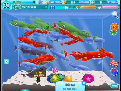 Happy Aquarium Shark Make Money in Happy Aquarium