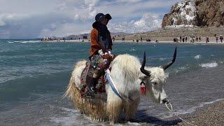 美麗西藏十日遊