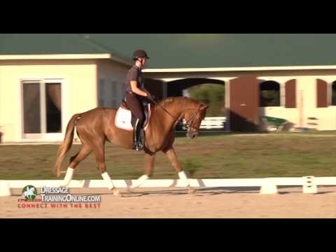 Catherine Haddad teaching proper contact and riding basics of young horse