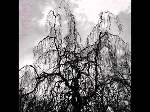 Colin Stetson Sarah Nuefeld - Wont Be A Thing To Become
