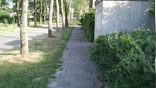 Wiko View 2: video-sample (met beeldstabilisatie)