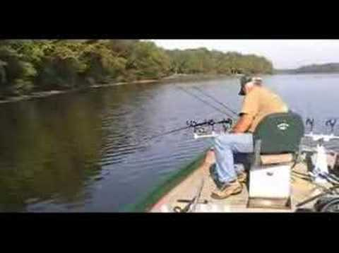 Crappie fishing on kentucky lake youtube for Kentucky lake crappie fishing report