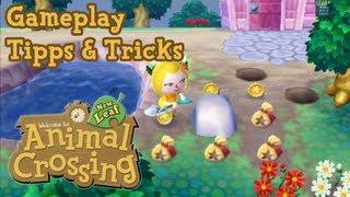 Animal Crossing New Leaf Gameplay - Tipps und Tricks - Viel Geld machen / Viele Sternis bekommen