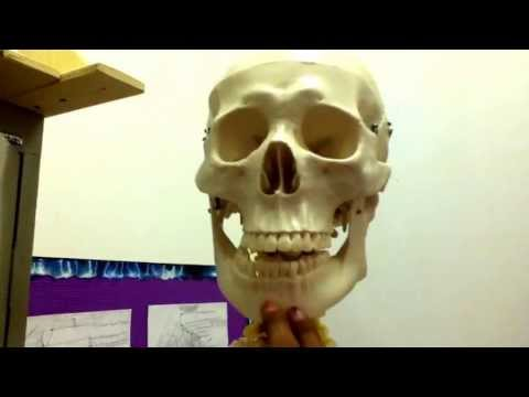 Gods Lake Narrows: The Talking Skeleton. thumbnail