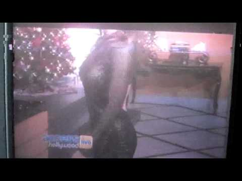 Access Hollywood - Richlee LeVine.wmv
