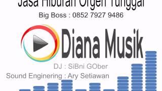 Orgen Tunggal Lampung Diana Musik - Mandul