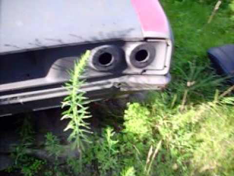 2008 Hunnert Car Pileup - Rats