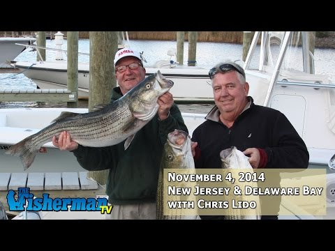 November 4, 2014 New Jersey/Delaware Bay Fishing Report with Chris Lido