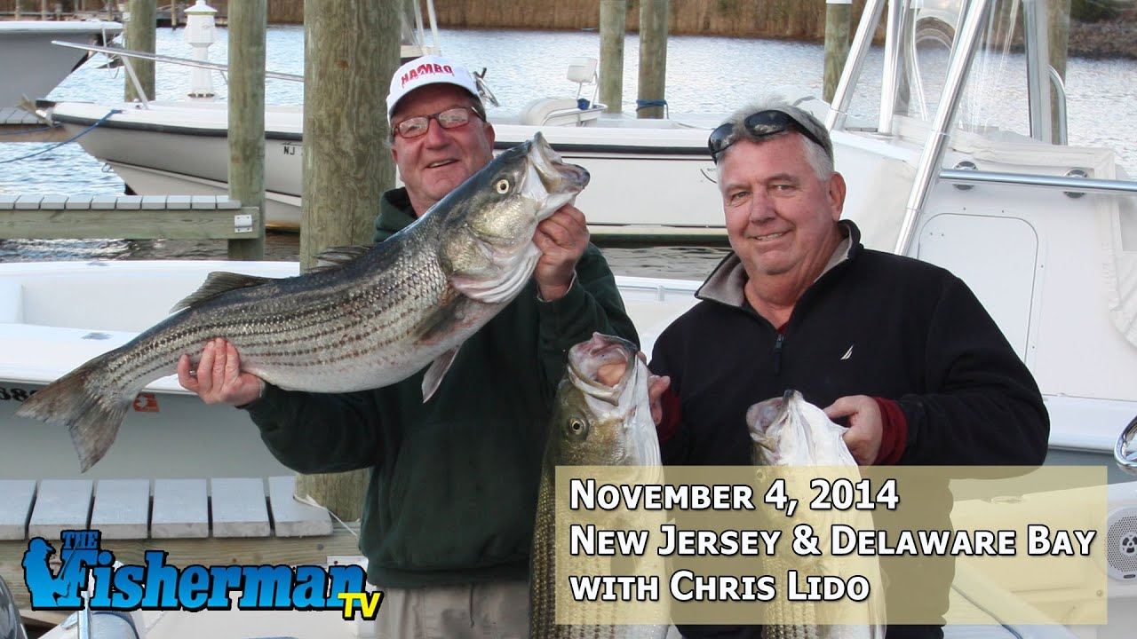 November 4 2014 new jersey delaware bay fishing report for Nj fishing reports now