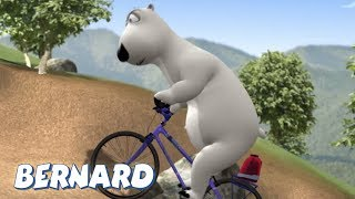Bernard Bear | Mountain Biking AND MORE | Cartoons for Children