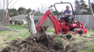 Removing tree stump with Kubota BX