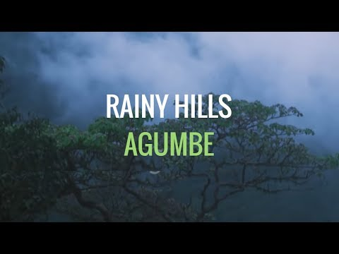 Agumbe - the rain-country