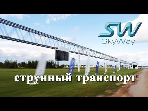 Дан старт 2017 году ЭКОЛОГИИ в России.