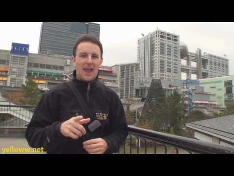 Odaiba Tokyo Beach Travel Guide