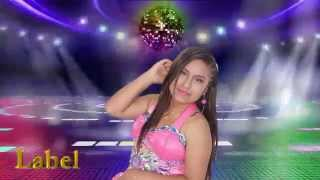 ELY CORAZON ▶ MIX FULL HD LLININ LUIS  2015