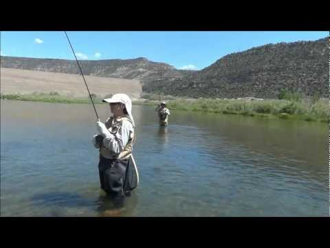 Fly Fishing for trout San Juan River father/ son June 2012