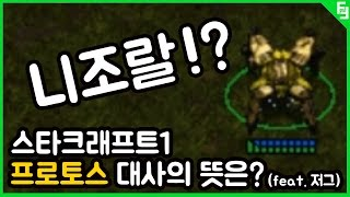 The meaning of Starcraft 1's Protoss's Lines?[feat. Zerg]