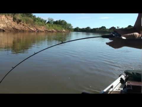 pescaria no rio sao francisco (fazenda poço do mel)