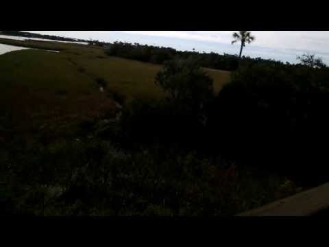 Google Glass Video From On Top Causeway At Crystal River Archaeological Park