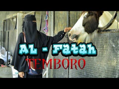 Ternyata Seperti Ini !!! Suasana Pertemuan Walisantri Al-Fatah 2018 Temboro... keren !!    Aileron